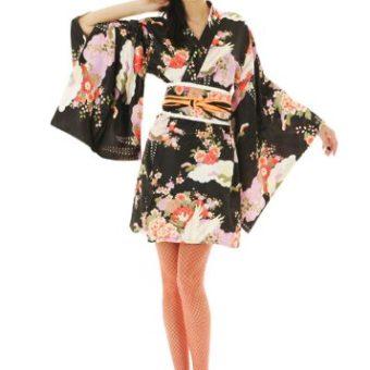 geisha kost m archive kost mkiste. Black Bedroom Furniture Sets. Home Design Ideas