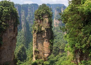 Pandora - die Landschaft aus dem Kinofilm Avatar