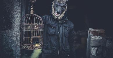 Wolf Maske mit Käfig