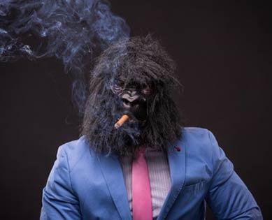 Gorilla Kostüm mit Anzug und Zigarre